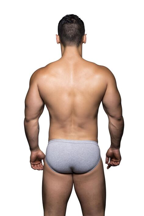 Basix Tagless Comfort Brief grå