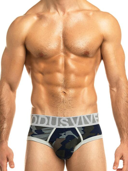 Modus Vivendi army brief